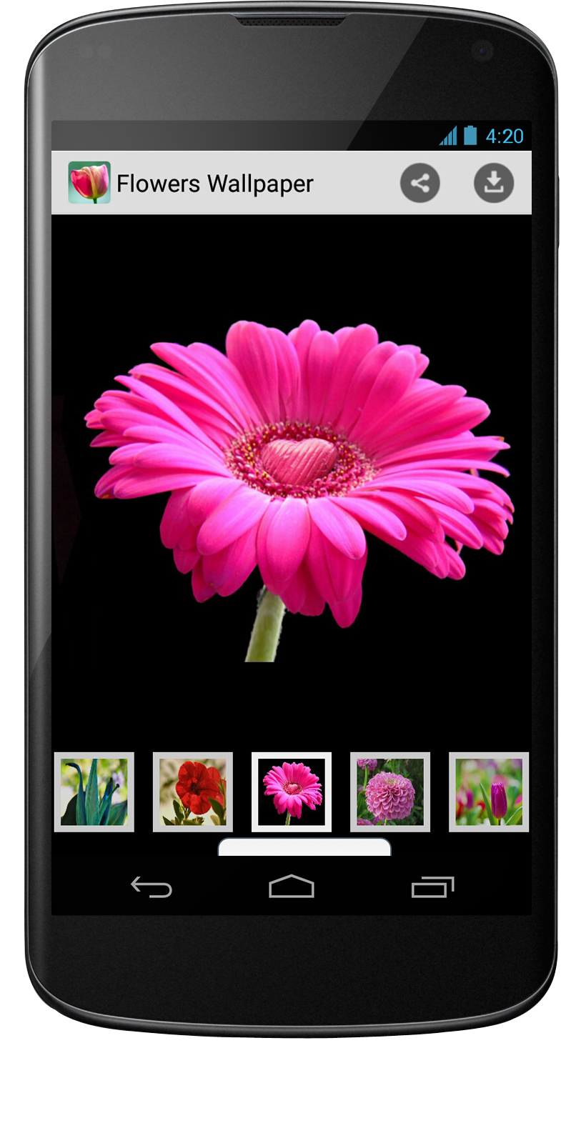 Wallpaper App For Android Mobile App Development Android App