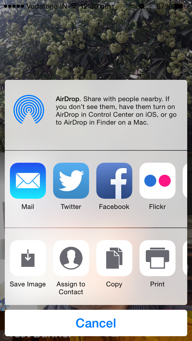 Front Back iOS App